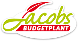 Taxus bij Budgetplant.be